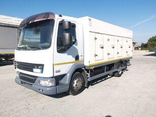 camion frigo DAF 45.220 SURGELATI ATP 10/2024 - 120QLI