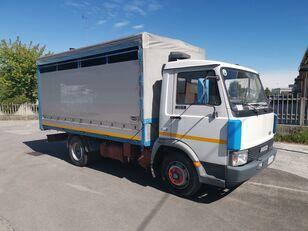 camion trasporto bestiame IVECO ZETA 50.9 Trasporto Animali Vivi