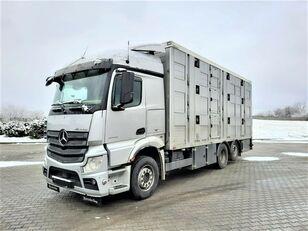 camion trasporto bestiame MERCEDES-BENZ Actros 2543 6x2