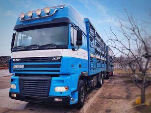 camion trasporto bestiame PEZZAIOLI + rimorchio trasporto bestiame