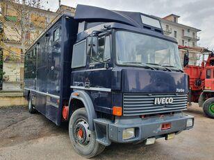 camion trasporto cavalli IVECO Turbo 175.24